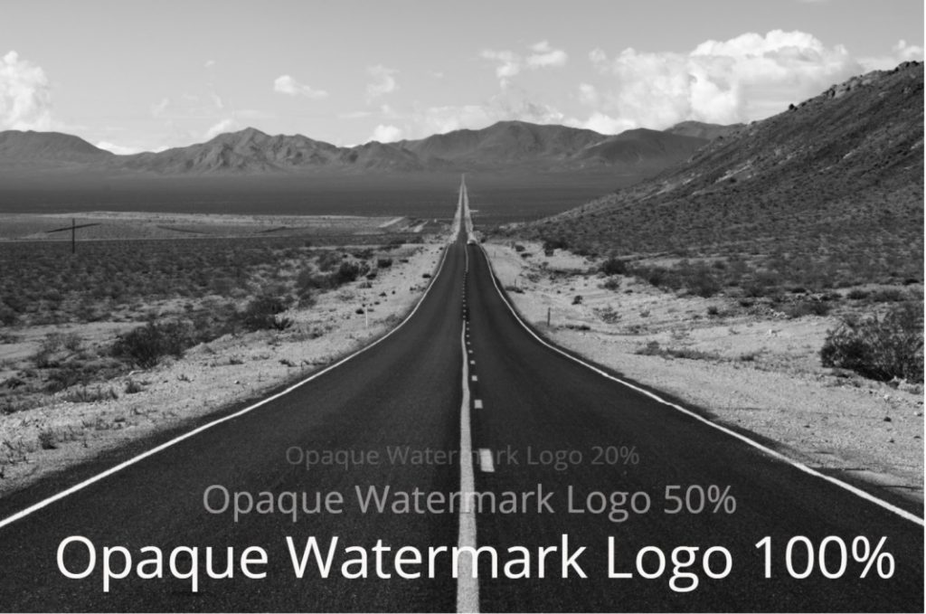 watermark photo logo