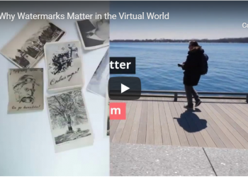 Watermarks Matter in the visual world