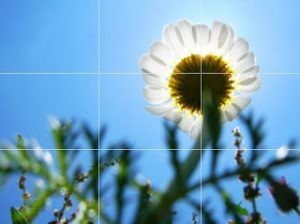 Mathematics in Photography: The Golden Photo